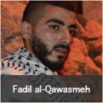 fadil al qawasmeh