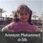 amneyah mohammed al silk