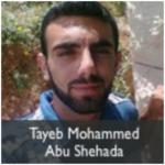 tayeb mohammed abu shehada