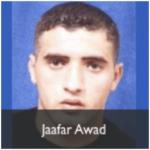 jaafar awad